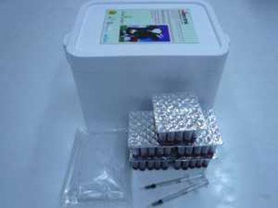 ชุดตรวจสอบยาปฏิชีวนะตกค้างในน้ำนมรูปแบบใหม่-400