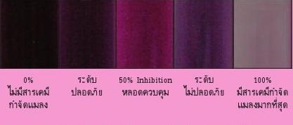 04-การเทียบสีอ่านค่าสารพิษตกค้าง