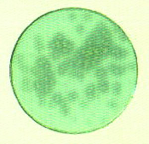 Clear zone ที่เกิดขึ้นรอบๆโคโลนีแสดงถึงกิจกรรมของเอนไซม์โปรตีเอส